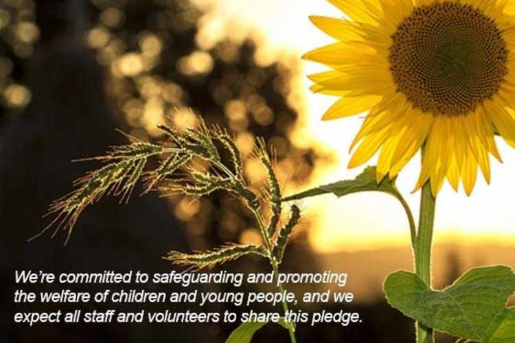 Flourish Education Sunflower